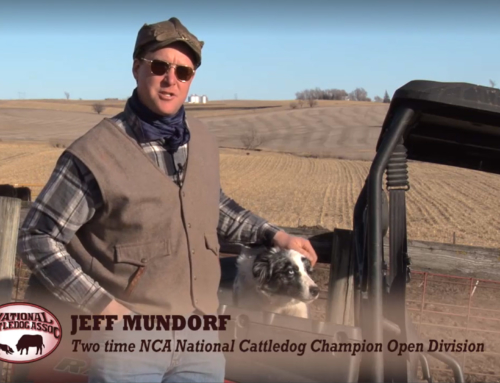 National Cattledog Association