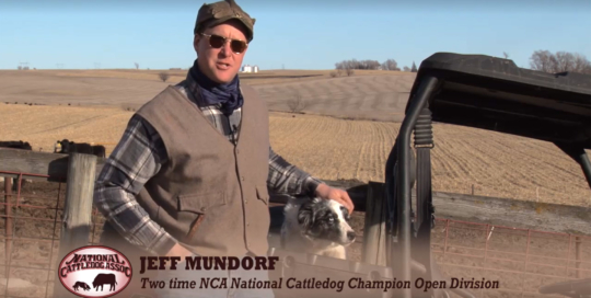 National Cattledog Association. LP Photo Video. Omaha Video Production.