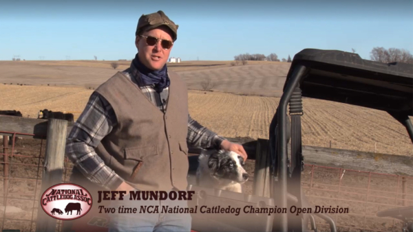 National Cattledog Association. LP Photo Video. Omaha Video Production.