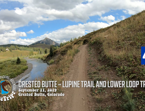 Crested Butte Lupine and Lower Loop Trails